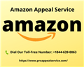Amazon Appeal Services